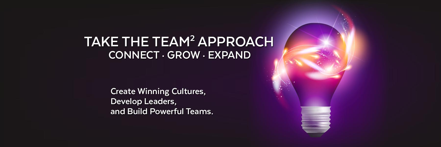 The-TEAM-Approach