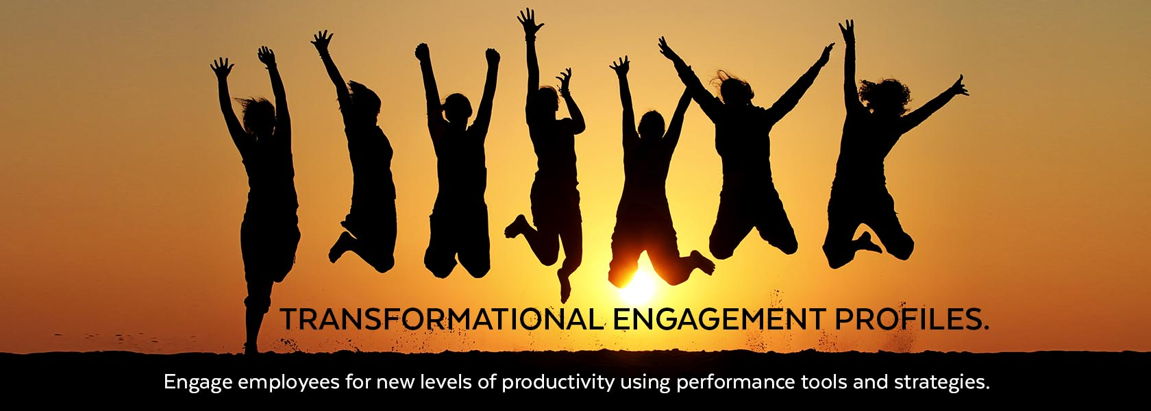 Transformational Engagement Profiles
